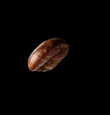 demo-attachment-36-coffee-beans-P4MXYZD@2x